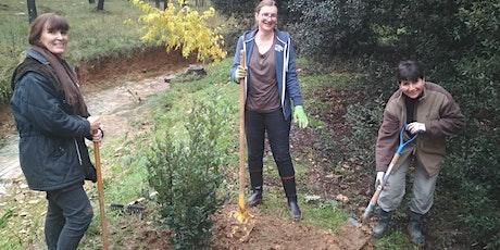 AAP QVT 2019: Plantons des arbres sur le Campus d'Azur ! billets