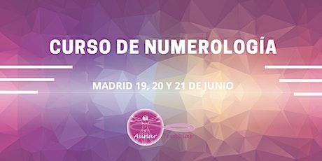 CURSO DE NUMEROLOGÍA EN BASE 22 entradas