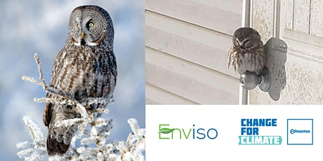 Owls, Owlers and Owling in Alberta tickets