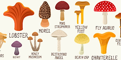 Introduction to PNW Mushrooms (Zoom) tickets