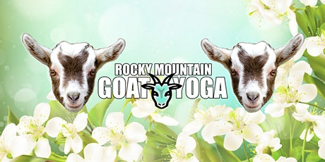 Goat Yoga - April 11th (RMGY Studio) tickets