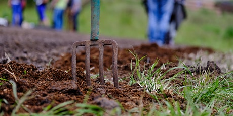 Composting Workshop Series: Introduction to Backyard Composting tickets