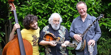 THE DAWG TRIO with TROUT STEAK REVIVAL at CHAUTAUQUA AUDITORIUM tickets