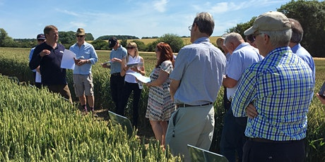Saaten Union and AHDB Open Day featuring Arable Connections tickets