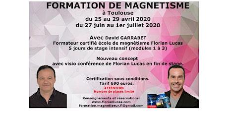 Formation en magnétisme Toulouse sur 5 jours billets