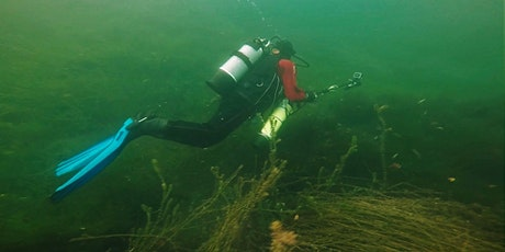What lurks beneath the waterways? tickets