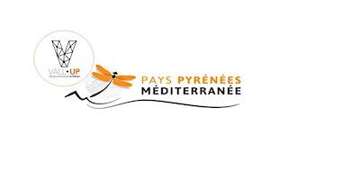 RENDEZ-VOUS VALL-UP AVEC LE PAYS PYRENEES-MEDITERRANEE (PPM)