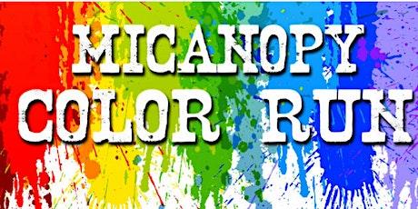 Micanopy Color Run 2020 tickets