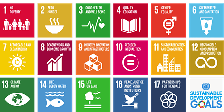 Integrating the UN Sustainable Development Goals within your Course tickets