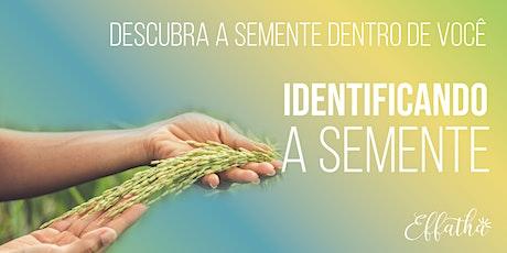 Identificando a semente tickets