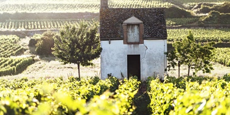 French Classics - some of the best wines from across France   tickets