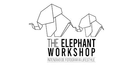 THE ELEPHANT - Workshop Intensivo de Fotografia Lifestyle (online) ingressos