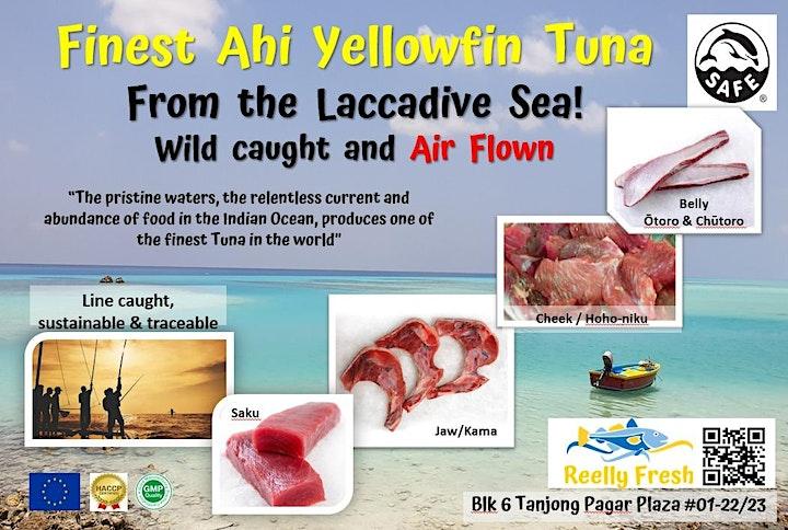 Sashimi Grade Yellow Fin Tuna image