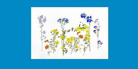 Botanical Art Workshop (Adult Event) tickets