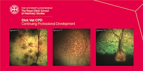 Ophthalmology - All about fundoscopy tickets