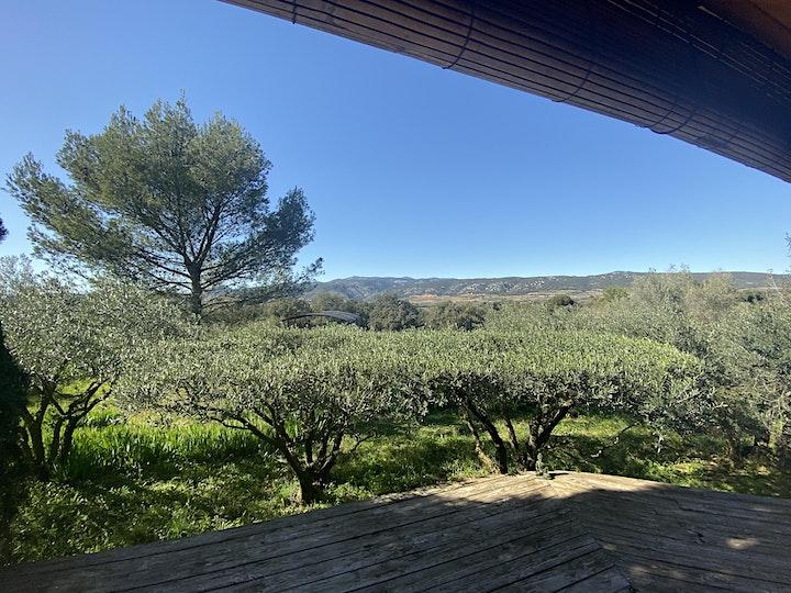 Image pour Masterclass de Anuka Yoga en pleine nature  dans le  Sud de la France