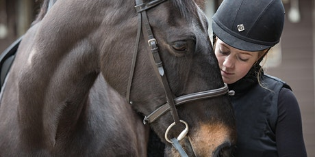 Get Started with Equine tickets