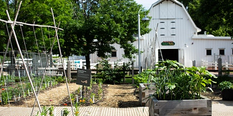 Small Container Gardening & Transplanting Workshop tickets