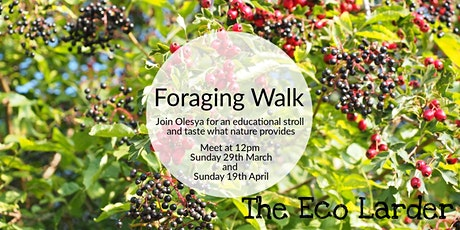 April Foraging Walk With Olesya tickets