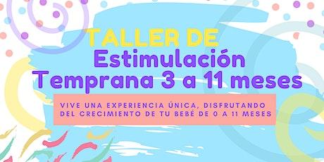 TALLER DE ESTIMULACIÓN  TEMPRANA 3 A 11 MESES boletos