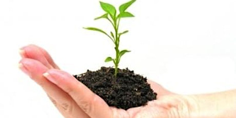 Free workshop: Keep Growing – More Leads, More Sales and More Revenue tickets