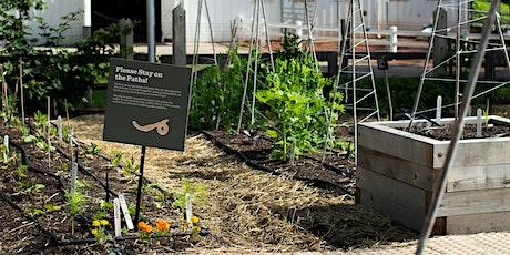 Mid-Summer Garden Maintenance Workshop tickets