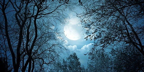 Moonlit Night Hike At Starlight Meadows Farm tickets
