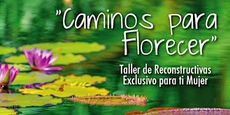 Caminos Para Florecer - Taller de Reconstructivas tickets