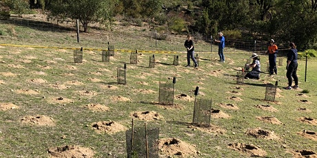 Community Planting at Thomas Oval Bushland tickets