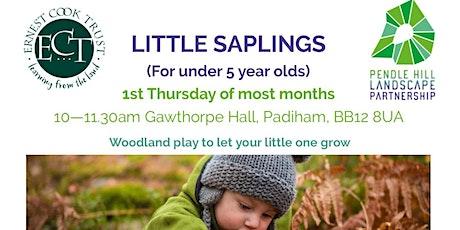 LITTLE SAPLINGS - Gawthorpe Hall, Padiham -  Signs of Spring  theme tickets