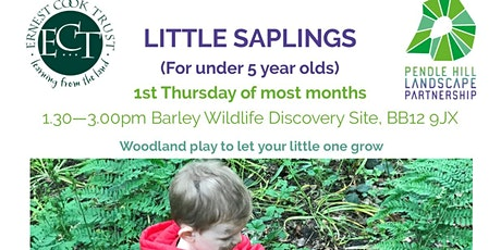 LITTLE SAPLINGS - Barley Wildlife Discovery Site -  Signs of Spring  theme tickets