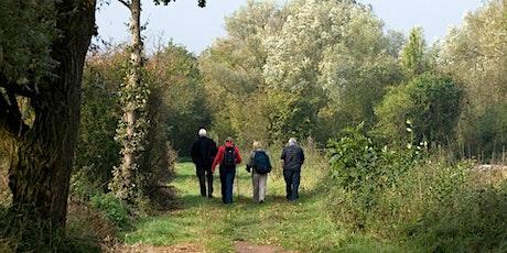 Woodland walk tickets