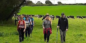 Camino Training Morning | Tipperary Heritage Way