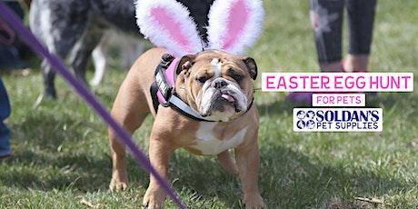 Easter Egg Hunt For Pets - Dewitt tickets