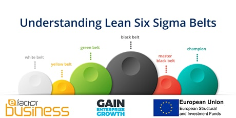 Lean 6 Sigma white belt tickets