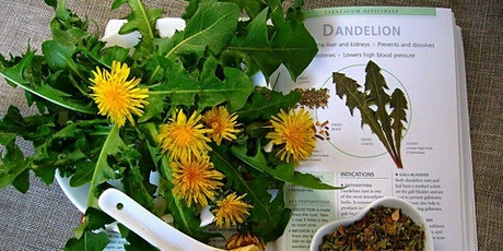 April Wild Weeds Tea Party: Connecting with Dandelion tickets