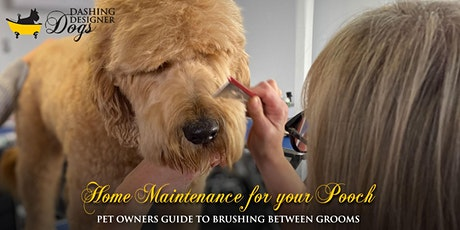 Home Maintenance For Your Pooch tickets