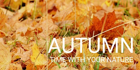Five Element Meditation Autumn - Free Meditation, Mindfulness Melbourne tickets
