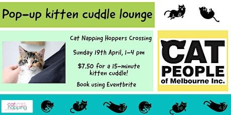 Pop-up Kitten Cuddle Lounge tickets