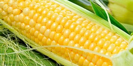 Naija Corn Festival tickets