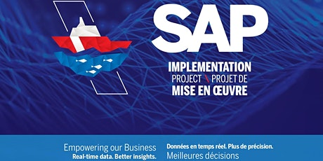 SAP Implementation Project Overview tickets