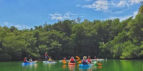 Coastal Photo Safari - Kayak and Paddleboard Tour tickets