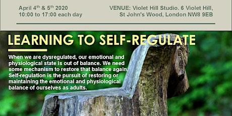 Psychotherapy Workshop on Emotional Self-Regulation (2-days) tickets