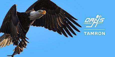 Bald Eagles of Conowingo Dam - Photo Expedition tickets