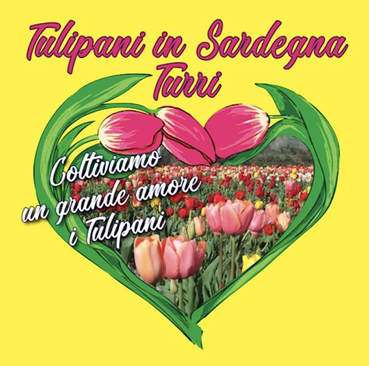 Immagine Adotta un Tulipano + Ingresso Parco HobbyFlor