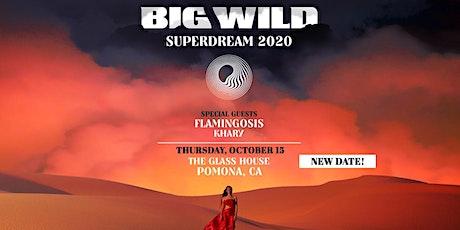 Big Wild tickets