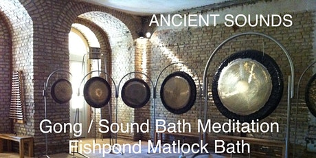 https://facebook.com/events/s/gong-sound-bath-fishpond-matlo/14446276661323 tickets