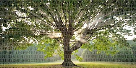 Collaboration Tree Hackathon - Online tickets
