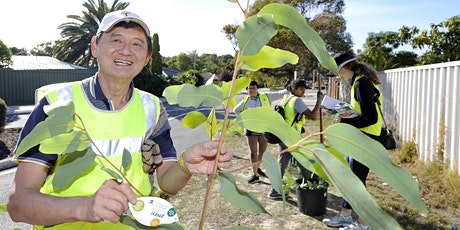 Community Tree Planting -  Balcatta tickets