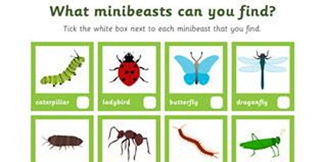 Mini Beast Hunt and Make a Mini Beast Home - Outdoor Adventure Team tickets